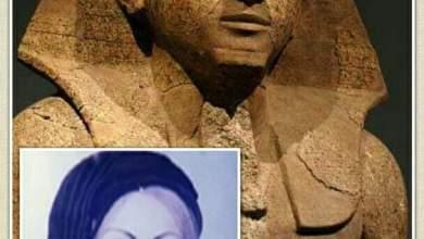 """صورة الدكتورة """"سعاد ماهر"""".. حتشبسوت مصر المعاصرة"""
