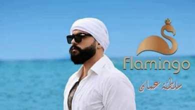 صورة حيدر أحمد إلى وجه جديدة بعالم الإعلانات إلى سلطنة عمان مع فلامنجو للعطور