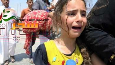صورة اليوم العالمي للاجئين وتسليط الضوء على معاناتهم