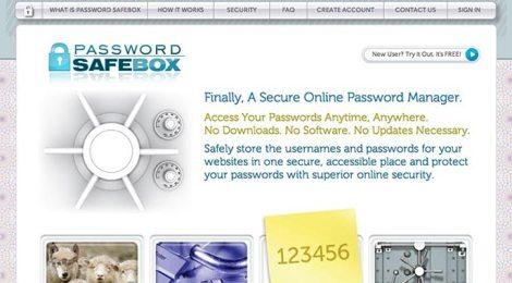Portfolio: Password Safebox