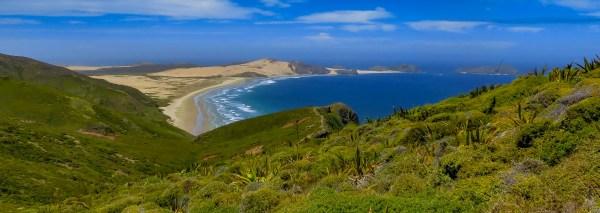 Nelson Zealand