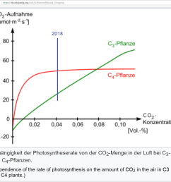 dependence of the rate of photosynthesis on the amount of co2 in the air in c3 and c4 plants from https de wikipedia org wiki photosynthese  [ 1129 x 1056 Pixel ]