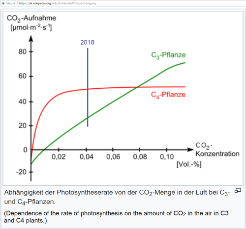 small resolution of  dependence of the rate of photosynthesis on the amount of co2 in the air in c3 and c4 plants from https de wikipedia org wiki photosynthese
