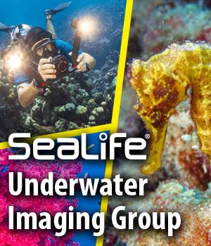 SeaLife underwater imaging group