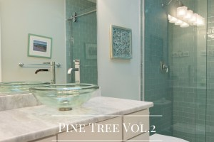 Bathrooms Gallery Bathroom Remodel Pine Tree Vol.2 by Sea Light Design-Build
