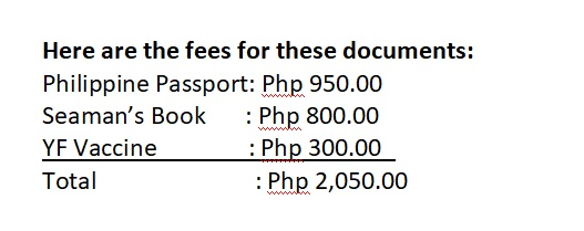 Basic travel documents and their amount