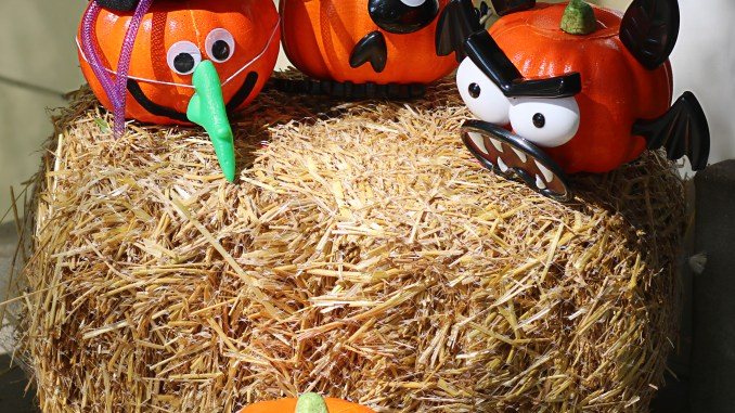 Easy Pumpkin Decorating for Kids and Toddlers Decorating Kits