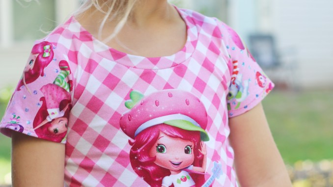 Strawberry Shortcake Inspired Fabric Panel