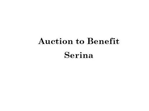 Auction To Benefit Serina with Knitorious Fabric due to Paradice, CA Fire