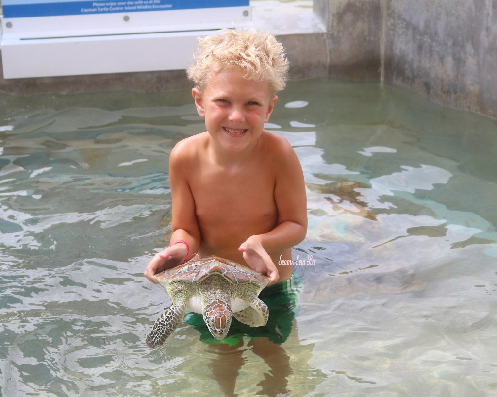 Holding Turtles at the Cayman Turtle Center