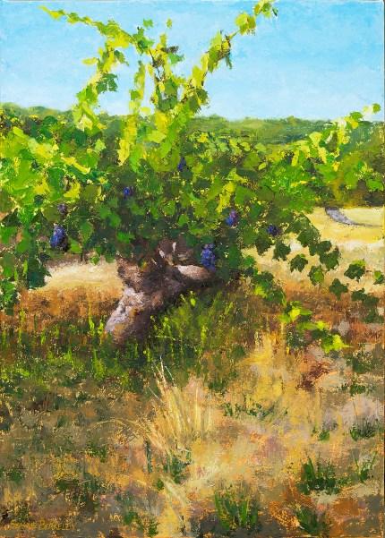 Sonoma Vineyard Final Painting Seamus Berkeley