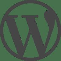 WordPress theme development CSS core