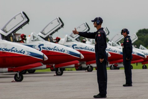 snowbirds_costello_yow2015-1461