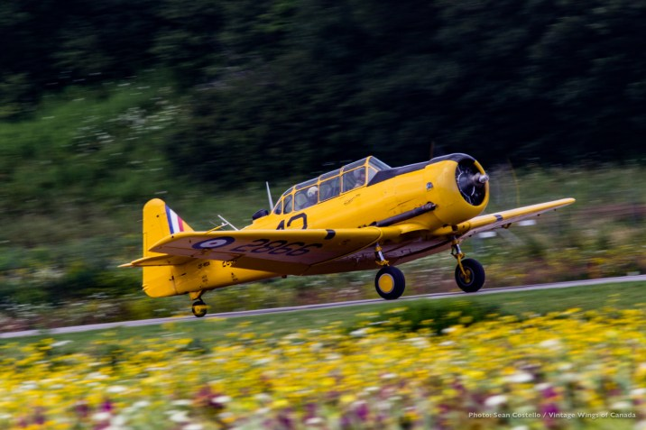 vintage-wings-yellow-wings-cadet-flight-day-2017-sean-costello-9902