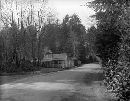 cummingscottage