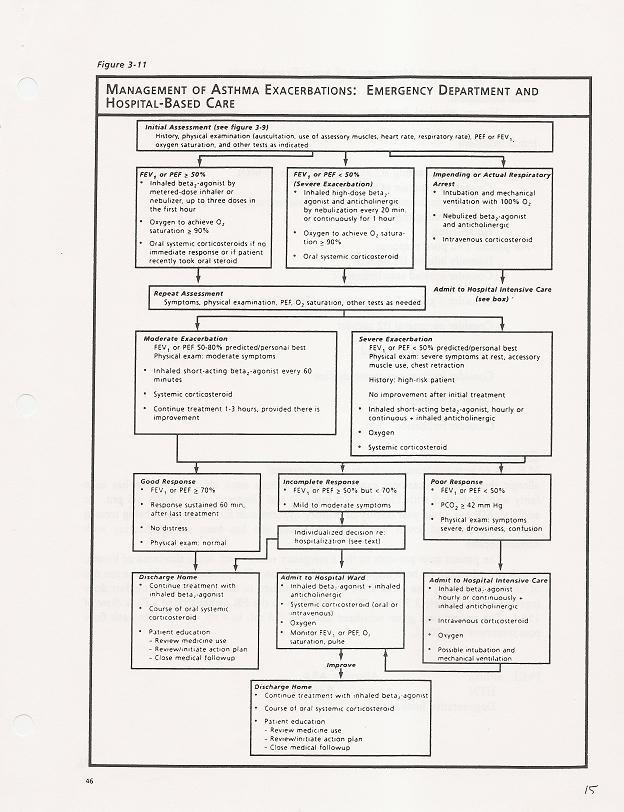 NIH Stroke Scale Cheat Sheet http://www.seanmeskill.com