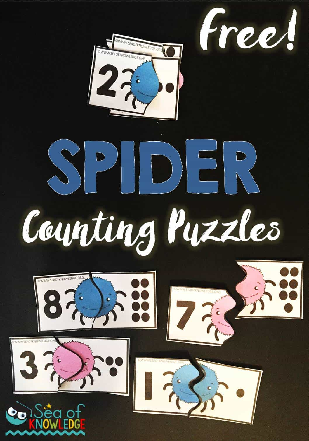 Spider Counting Puzzles Free