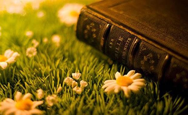 Uma Bíblia, um presente, uma vida.