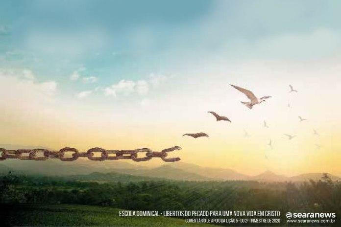 Libertos do Pecado para uma Nova Vida em Cristo