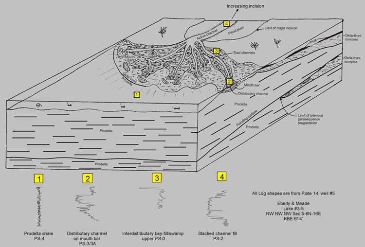 Idealized Booch tidal delta