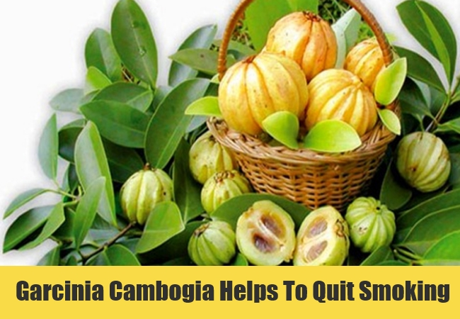 Garcinia Cambogia Helps To Quit Smoking