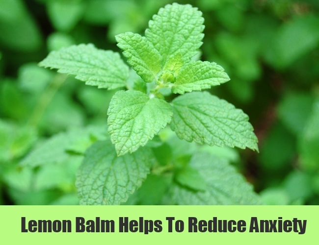 Lemon Balm Helps To Reduce Anxiety