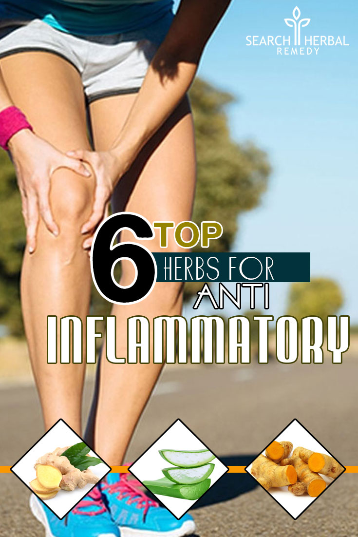 top-6-herbs-for-anti-inflammatory