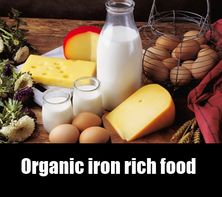 organic iron rich food