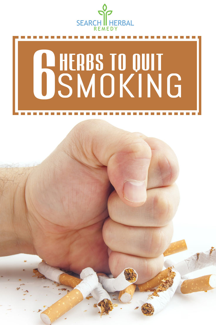 6-herbs-to-quit-smoking