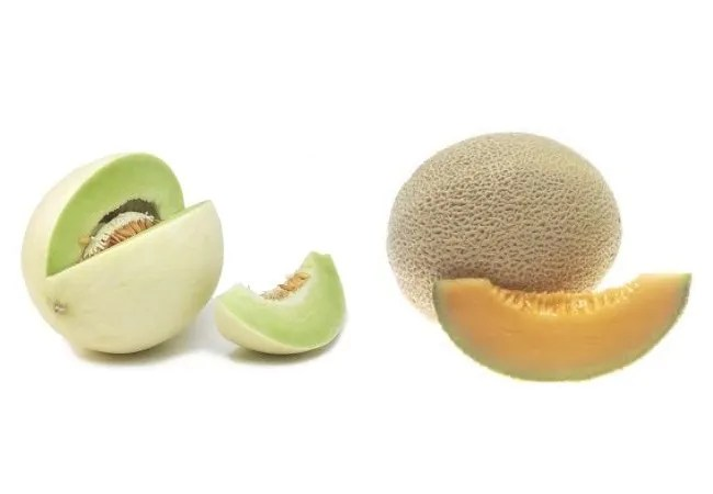 Honeydew and Cantaloupe