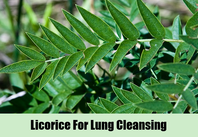 Licorice For Lung Cleansing