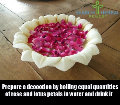 rose and lotus petals