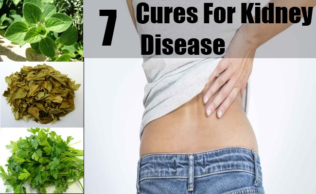 7 Cures For Kidney Disease