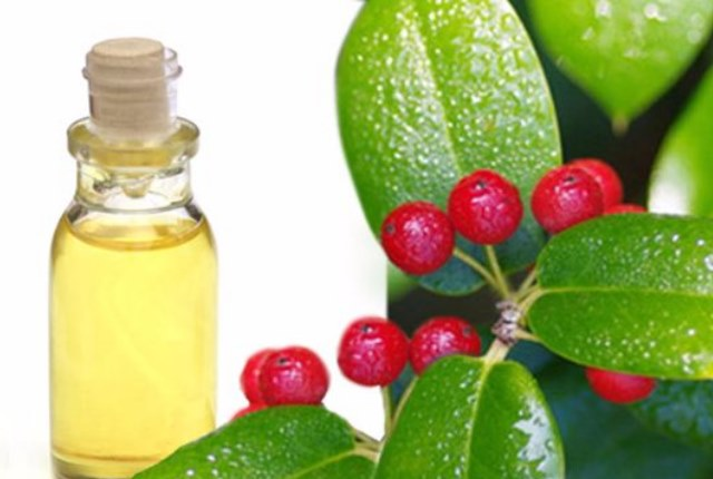 Oil Of Wintergreen Alleviates Sciatic Pain
