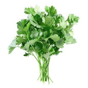 The Aroma of Parsley
