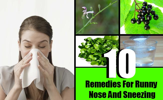 10 Remedies For Runny Nose And Sneezing
