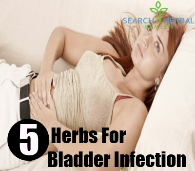 bladder infection