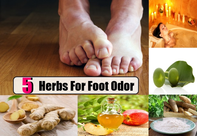 Herbs For Foot Odor