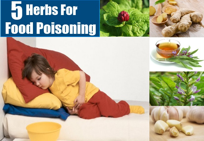 Best Natural Cure For Food Poisoning