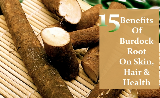 Benefits Of Burdock Root On Skin, Hair And Health