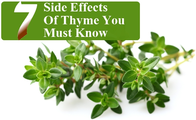 Surprising Side Effects Of Thyme You Must Know