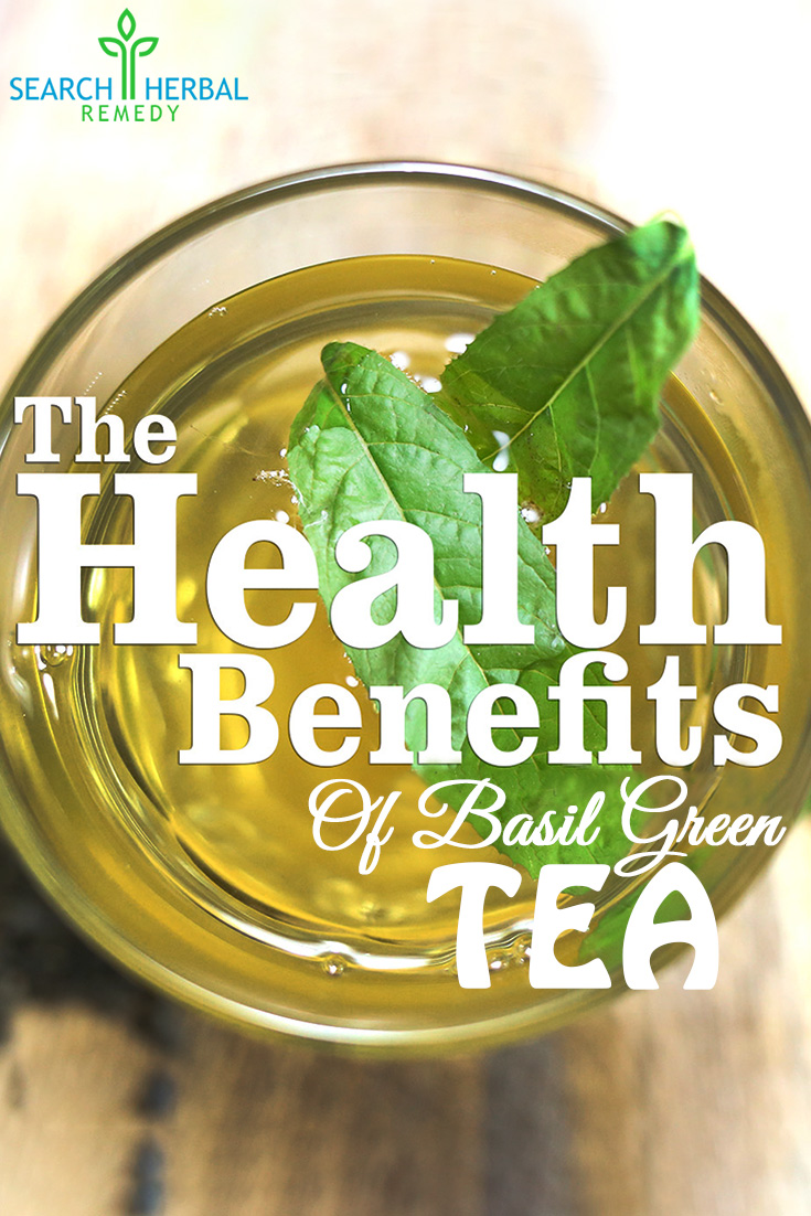 15 Health Benefits Of Basil Green Tea