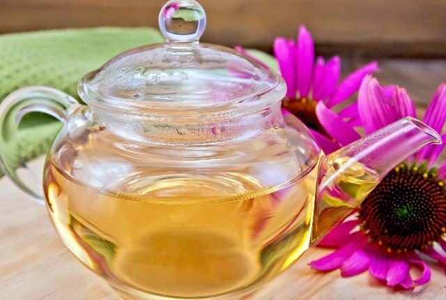 Echinacea Tea
