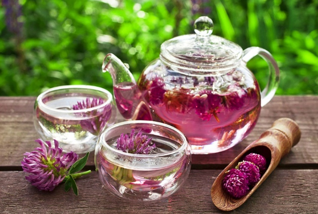 Red Clover Tea