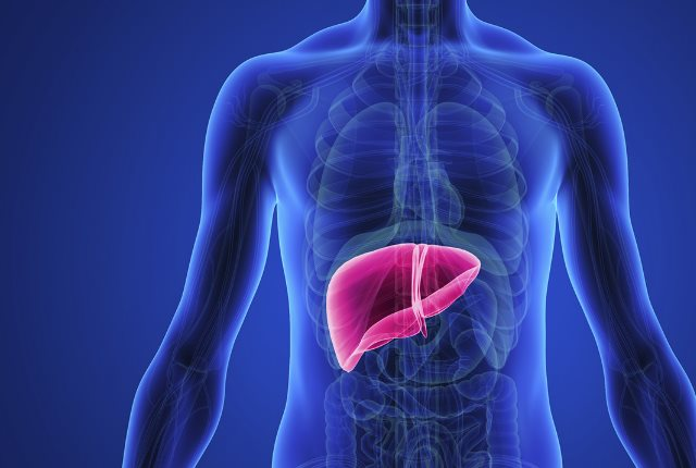 Protects Liver