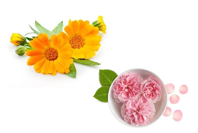 Calendula And Rosewater