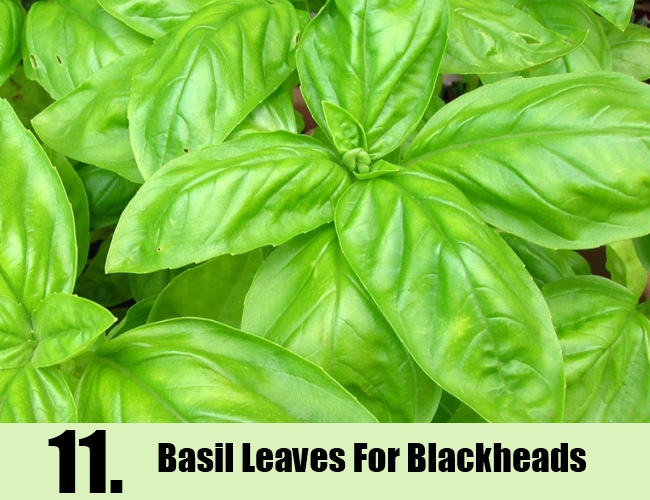 Basil Leaves For Blackheads