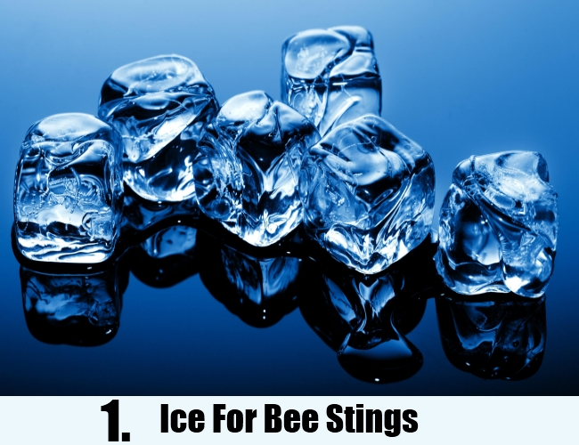 Ice For Bee Stings
