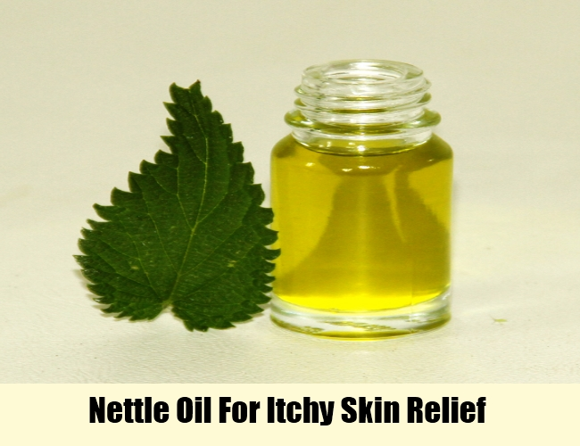 Nettle Oil For Itchy Skin Relief