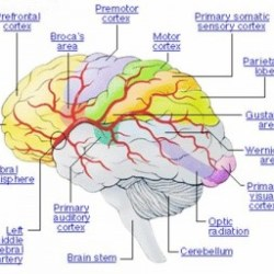 Drugs And Medications To Treat Bipolar Disorder